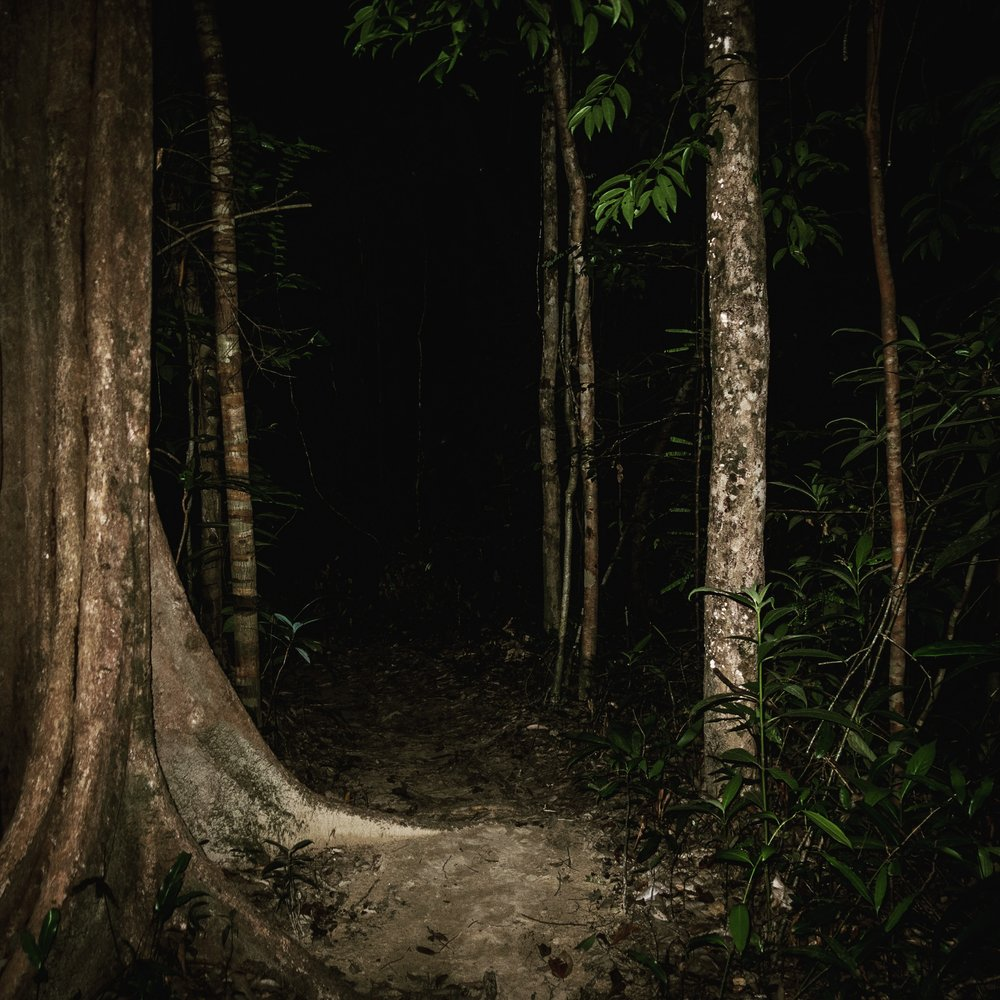 The path back from Sunset Beach at night